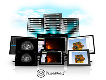 From medical imaging to astronomy to industrial simulation and training, PureWeb utilizes the power of NVIDIA Quadro technology to provide access to visualization-intensive applications over the web to any device.