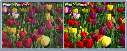 Precise, vivid color example